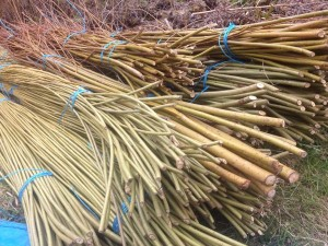 willow bundles ends